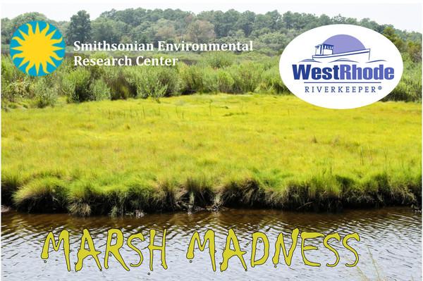 Marsh_madness_banner